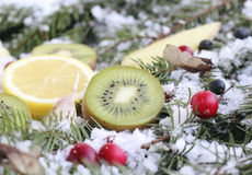 Fruit on snow Royalty Free Stock Images