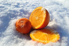 The fruit in the snow stock photo