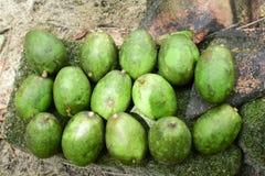 Kedondong Royalty Free Stock Photo