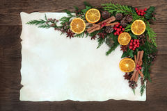 Fruit and Spice Border Royalty Free Stock Images