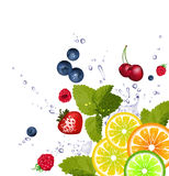 Fruit and splash of water. Vector illustration Stock Photo