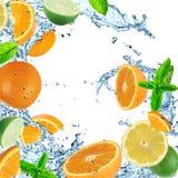 Fruit with splashing water Royalty Free Stock Images