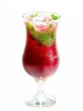 Fruit spritzer Royalty Free Stock Image