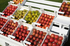 Fruit stall. In Lower Saxony, Germany royalty free stock photos