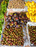 Fruit stand. Siniguelas and Mangosteen on display at a fruit market Stock Images