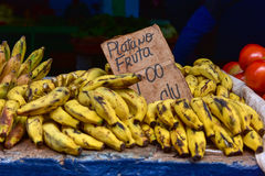 Fruit Stand - Havana, Cuba. Bananas on a fruit stand in Old Havana, Cuba Royalty Free Stock Images