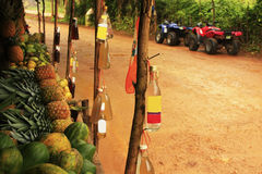 Fruit stand in small village, Samana peninsula Stock Photos