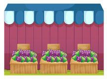 Fruit stands with grapes Royalty Free Stock Photography