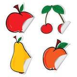 Fruit sticker  illustration Stock Images