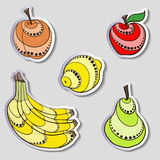 Fruit Stickers. Bright fruit stickers on light gray background Stock Photos