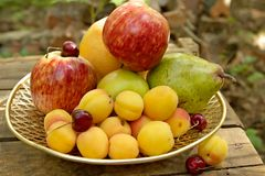Fruit still-life Stock Photography