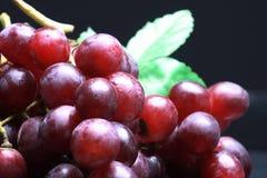 Fruit still-life Stock Photo