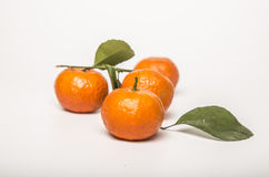 Fruit still life. White background, indoor shooting of orange Royalty Free Stock Photos