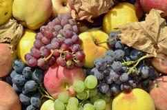 Fruit stored Royalty Free Stock Image