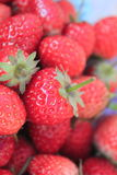 Fruit strawberry. Fresh red strawberry close up Royalty Free Stock Images