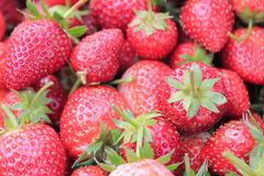 Fruit strawberry. Fresh red strawberry close up Stock Photos