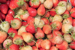 Fruit strawberry. Fresh red strawberry close up Royalty Free Stock Photo