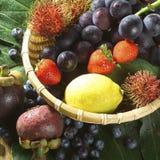 Fruit. Studio shot of fresh fruit Stock Photos