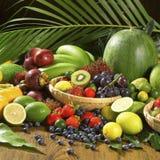 Fruit. Studio shot of fresh fruit Stock Images