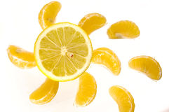 Fruit sun Stock Photography