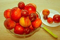 Fruit sur la table Pêches, nectarine, prunes Beau bonbon p Images libres de droits