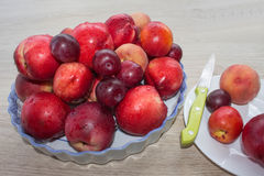 Fruit sur la table Pêches, nectarine, prunes Belles pêches, nectarine et prunes douces Photo libre de droits