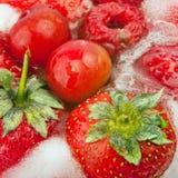 Fruit surgelé Photographie stock libre de droits