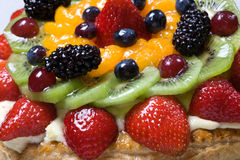 Fruit Tart. Assorted fruit covering creme filling and pastry Royalty Free Stock Photo