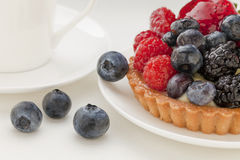 Fruit tart with blueberries Royalty Free Stock Image