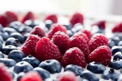 Fruit tart with fresh raspberry and blueberry. Morning light Royalty Free Stock Photo