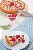 Fruit tart with raspberry and white chocolate Royalty Free Stock Photography