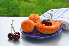 Fruit tartlet stock images