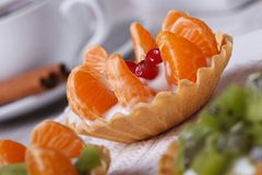 Fruit tartlets with mandarin, cranberry, kiwi Royalty Free Stock Images