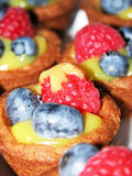 Fruit tarts Royalty Free Stock Image