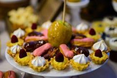 Fruit tarts Stock Photos