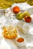 Fruit tea. A white background in outdoor fruit tea stock photos
