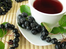 Fruit tea with black chokeberries Royalty Free Stock Image