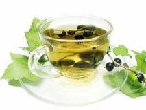 Fruit tea with black currant Royalty Free Stock Photos