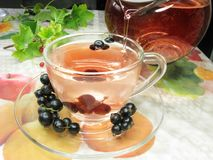 Fruit tea with black currant royalty free stock images