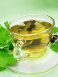 Fruit tea with black currant extract Royalty Free Stock Image