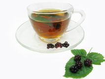Fruit tea with blackberry Stock Photography