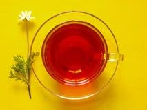 Fruit tea Royalty Free Stock Photography