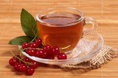 Fruit tea Royalty Free Stock Photos