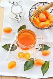 Fruit tea with kumquats Stock Images