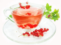 Fruit tea with red currant extract Royalty Free Stock Images