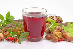 Fruit Tea with Rosehips Royalty Free Stock Photos