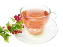 Fruit Tea With Red Currant Extract Royalty Free Stock Photos