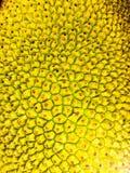 Fruit thaï Image libre de droits