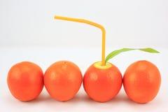 Fruit thinning, fruit, oranges, Royalty Free Stock Photo