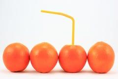 Fruit thinning, fruit, oranges, Royalty Free Stock Images